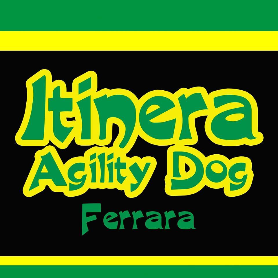 Itinera Agility Dog centro cinofilo