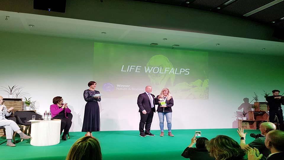 life_wolfalps
