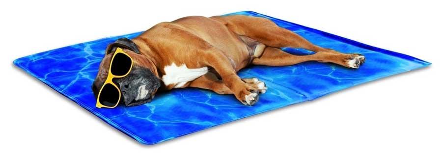 Prodotti-refrigeranti-per-cani-tappetino-refrigerante-cani-2