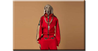 William Wegman Being Human