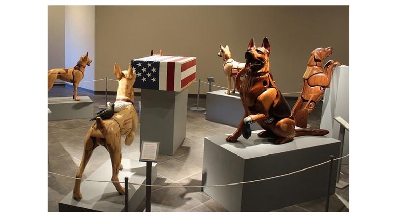 cani con ferite di guerra