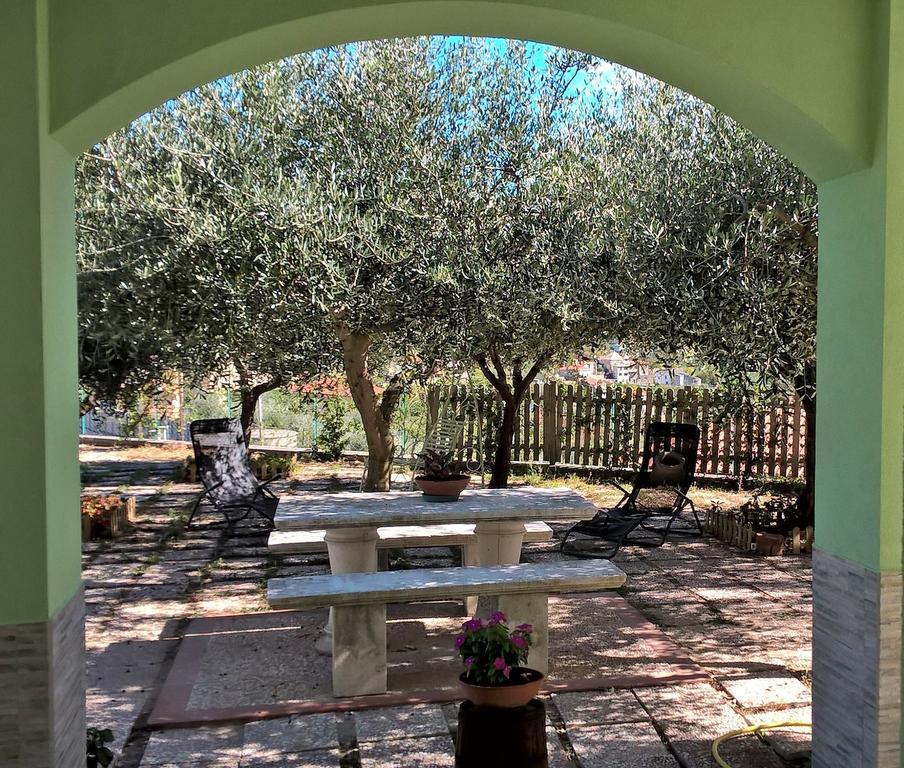 Giardino degli Ulivi foto B&B Elfo degli Ulivi