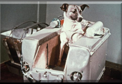Laika primo cane astronata
