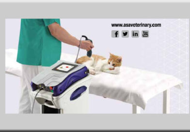 laserterapia mls ASAveterinary