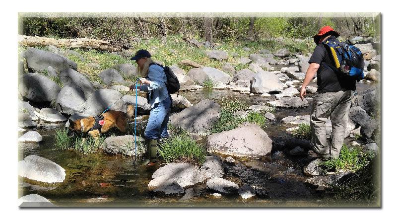 acqua inquinata Stati Uniti