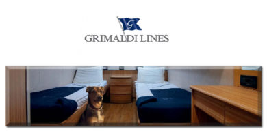Grimaldi lines cane a bordo animali domestici