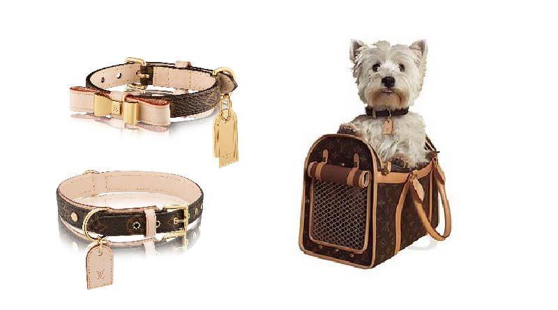 accessori lusso cani louis vuitton collare vuitton guinzaglio vuitton trasportino vuitton
