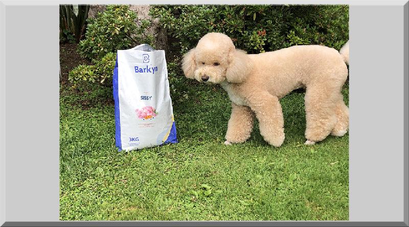 barkyn crocchette per cani crocchette barkyn cibo per cani barkyn