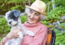 DOG AGING PROJECT INVECCHIAMENTO DEI CANI CANE
