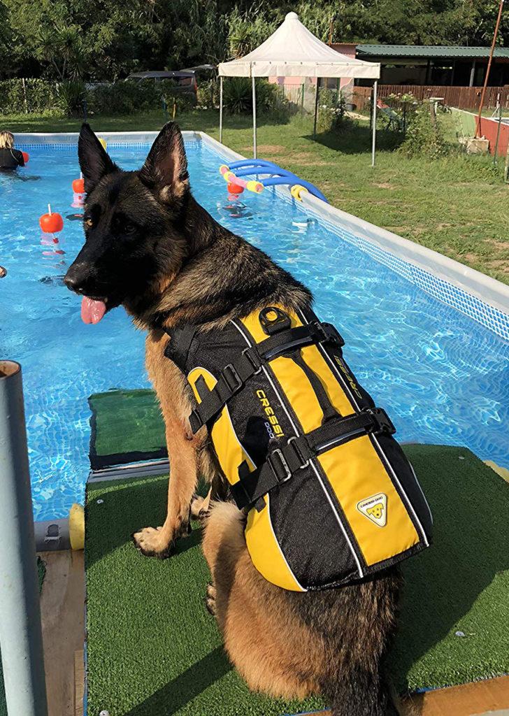 giubbotto di salvataggio per cani salvagente per cani cressidog life jacket