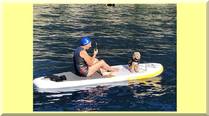 CRESSI HYDROSPORTS SUP DOG CRESSI DOG