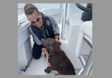 Labrador retriever salvagente per cani